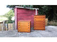 Pair of vintage chest of drawers in teak wood by Stag