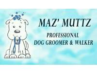 Professional Dog groomer and Walker