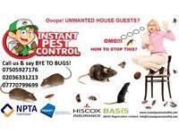 100%Guaranteed Pest Control Bedbug Rat Mice Ant Cockroach Wasp Flea Low-Cost Exterminator 24/7