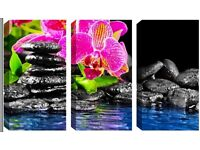 3 Panel Canvas -Gorgeous Pink Flowers on Pebbles - Reduced from £70.00 to clear BRAND NEW