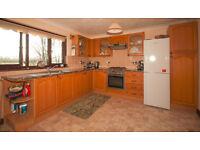 Complete Light Oak Kitchen, including sink and appliances