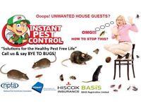 100%Guaranteed Pest Control 24/7 Bedbugs Mice Rat Cockroach Wasps Ants Flea Beetle Moth Squirrels