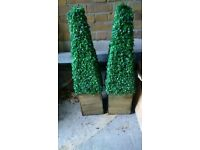 two fake or artificial box hedge plants