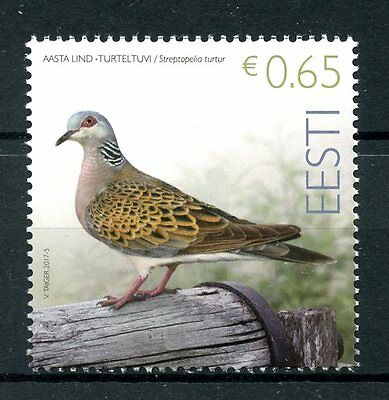Estonia 2017 MNH Turtledove Bird of Year 1v Set Pigeons Doves Birds Stamps