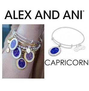 NEW ALEX AND ANI CAPRICORN BRACELET JEWELLERY - JEWELRY - CELESTIAL WHEEL CHARM BANGLE - SHINY SILVER 102939354