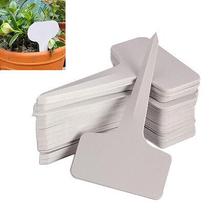 100pcs 6 X10cm Plastic Plant T-type Tags ...