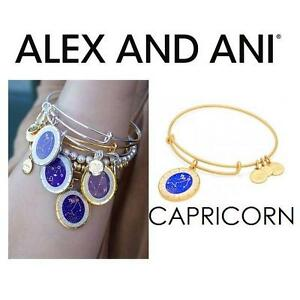 NEW ALEX AND ANI CAPRICORN BRACELET JEWELLERY - JEWELRY - CELESTIAL WHEEL CHARM BANGLE - SHINY GOLD 102950012