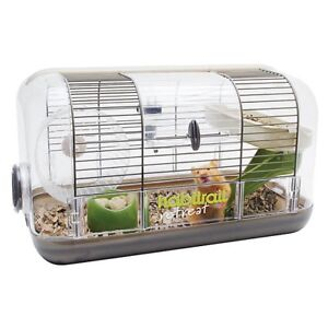 Hamster Cage & Two live Hamsters