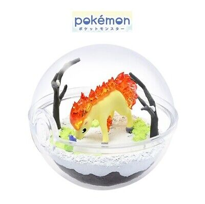 RE-MENT Pokemon Terrarium Collection Vol 5 Poke Ball Case Figure Toy Ponyta NEW