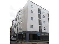 3 bedroom flat in Argyle Street, Liverpool, L1 (3 bed) (#1100919)