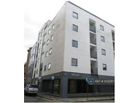 3 bedroom flat in Argyle Street, Liverpool, L1 (3 bed) (#1002767)