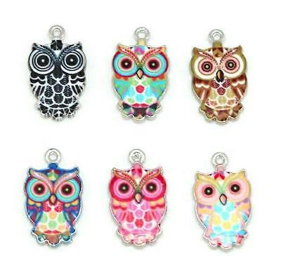 Enamel owl charms (6pk) for crafts and jewellery making. uk seller