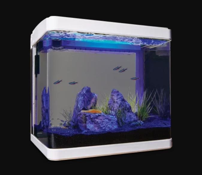 Imagitarium Freshwater Cube Aquarium Kit, 5.2 GAL - $60.00
