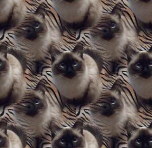 Graphic Design - Enhanced Pet Photos Kitchener / Waterloo Kitchener Area image 2