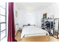 STUNNING AND BIG ONE BEDROOM APARTMENT IN SPRINGFIELD HOUSE E8 BROADWAY MARKET DALSTON JUNCTION