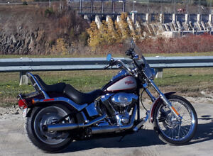 2007 HD SOFTAIL COSTOM