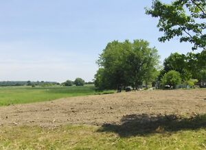 Lot For Sale Near Lake Erie (0.6 acre)