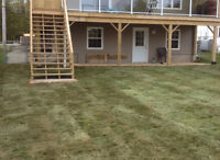 Landscaping, Sod Installation, Drainage Solutions
