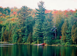 Thanksgiving at your own private lakefront cottage in Muskoka