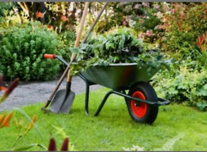 Gardening, lawn mowing services and Green waste removal