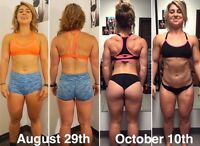 ***Certified & Experienced to Guarantee you Results***