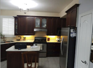 Kitchen Cabinets - Solid Maple Wood - Cherry Finish - Must See!