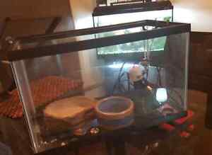 Reptile Starter Tank and Accessories