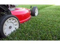 Gardener in Leeds - FREE QUOTES - Grass cutting - Hedge Trimming - Weeding - Maintenance