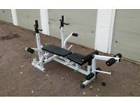 Weights bench - with fly, curl and leg extensions