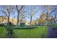 Newly Furnished studio in St James Park/Victoria Available now!!!