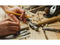 Profesional carpenter