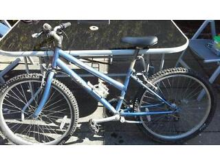 Girls Edinburgh mountain bike