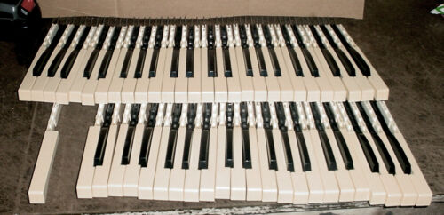 Vintage Lowrey Organ Keyboard Keys