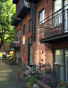 2 1/2 Apartment for rent Aylmer Street