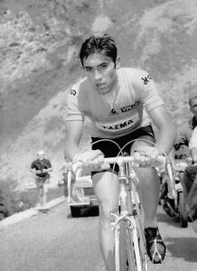 Eddy-Merckx-Tour-de-France-Cycling-Legend-10x8-Photo-2