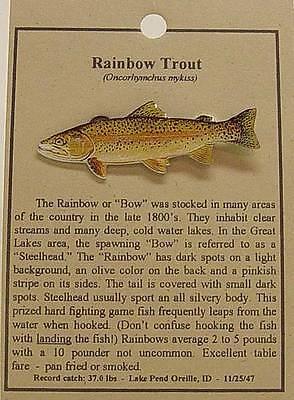 Fish Rainbow Trout (RAINBOW TROUT  FISH HAT PIN LAPEL PINS  )