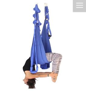Omni swing with spring absorber RRP$395 Rhodes Canada Bay Area Preview
