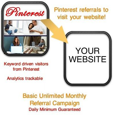 Website Visitors- 30 Days12000 Pinterest Referralsvisitors To Your Website