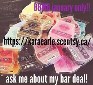 Independent Lead Scentsy Consultant.