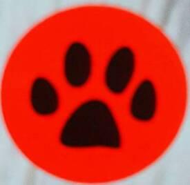 Mickies Walkies-Dog Walking/Daycare/Boarding