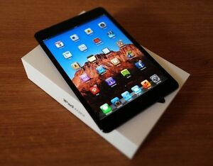 iPad mini - black