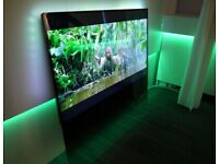 ULTRA SLIM SMART 55' LED PHILIPS PDL8908S FLOATING GLASS 1080P HD TV, AMBILIGHT, NO TEXTS/OFFERS