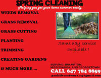 WEEKEND FRONT LAWN AND BACKYARD CLEANING IN BRAMPTON/MISSISSAUGA