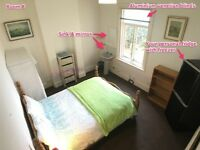Large Furnished Room in Quiet Victorian House 7 Min Walk to Colchester High Street * Mature House