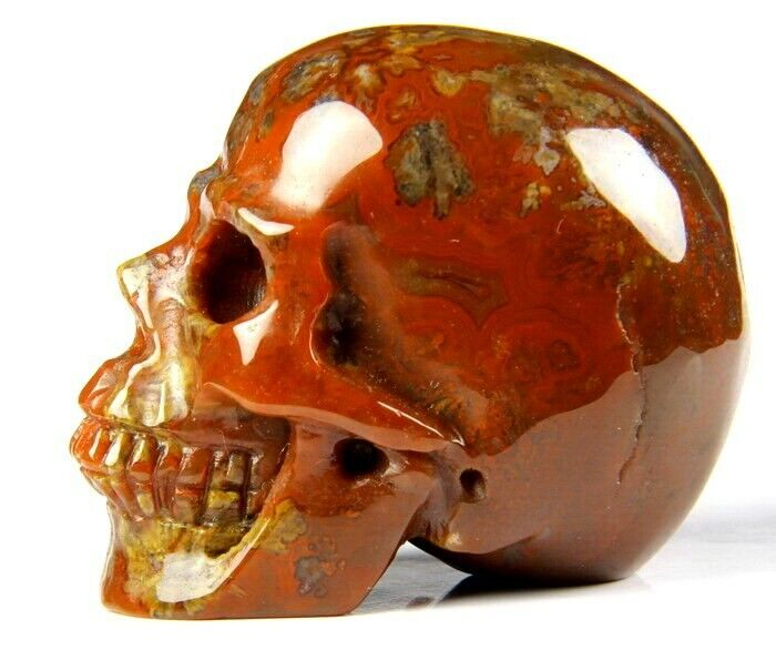 """2.2"""" EMPIRE RED AGATE Carved Crystal Skull, Realistic, Crystal Healing#716"""