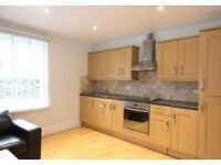 ONE BEDROOM FLAT, GREEN LANES, £1300PCM (AVAILABLE NOW)!