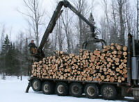Wanted: semi load firewood logs