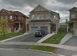 House For Rent Brampton Bovaird Local House Rentals In Toronto Gta Kijiji Classifieds