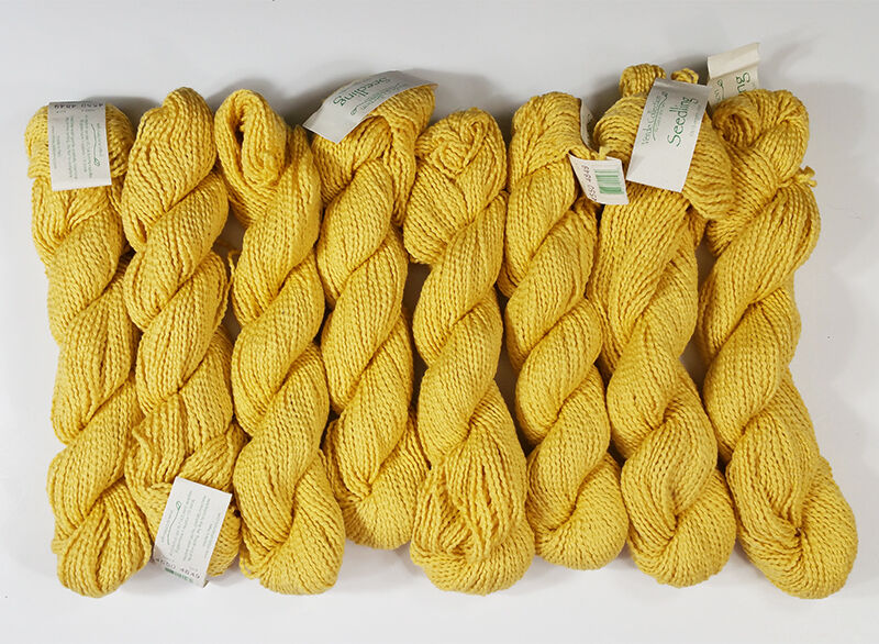 Evening Primrose 100% Organic Cotton Yarn 8 Hanks Seedling Verde Collection
