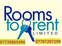 Double room to rent!